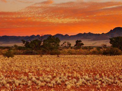 TheTravelClub_Namibië_Kalaharawoestijn_Landschap